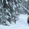 Aldo Mazzocchi primo in Alaska Alla Yukon Artic Ultra